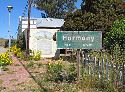 Harmony, California, Andrea Chilcote